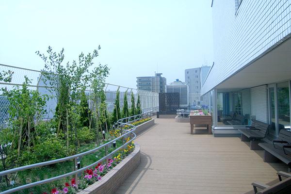 病院屋上ガーデン工事の様子